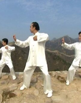 Formation instructeur de Qigong – première session