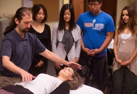 Praticien en Qigong Médical 4: Traitement des dysharmonies des organes