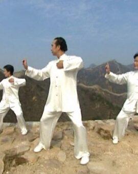 Formation Instructeur de Qigong: troisième année (1er versement)