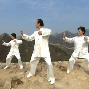 Formation Instructeur de Qigong: Ba Duan Jin